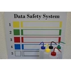 Data Safety System